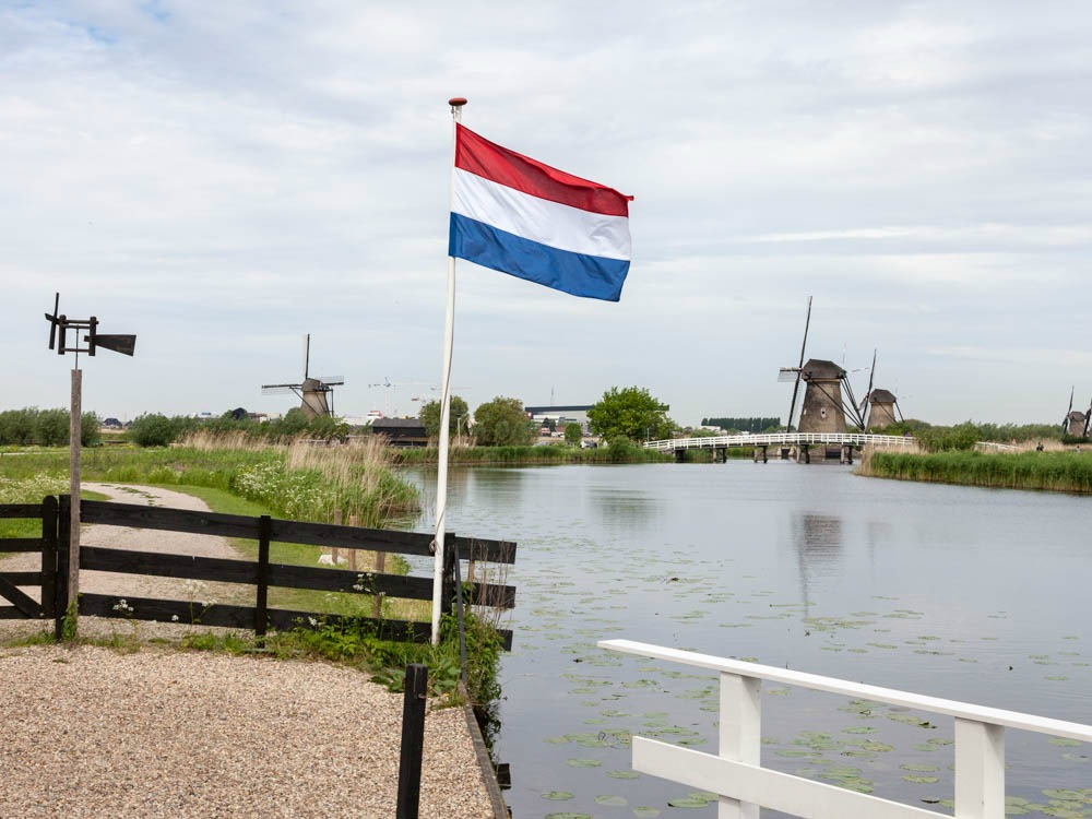 Make a tour from Amsterdam to Kinderdijk and The Hague