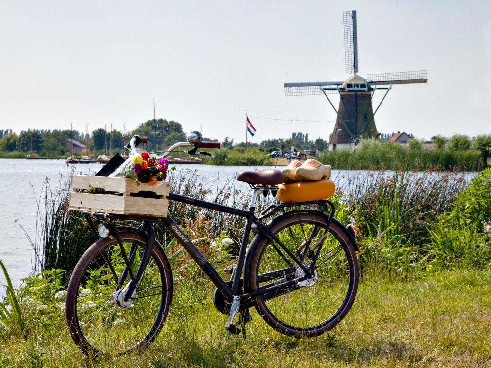 The Dutch Big 5: Flowers, windmills, cheese, wooden shoes and a bicycle
